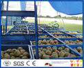 2TPH ~ 20TPH SUS304 Mango Processing Line With 2kg Cans Filling Machine