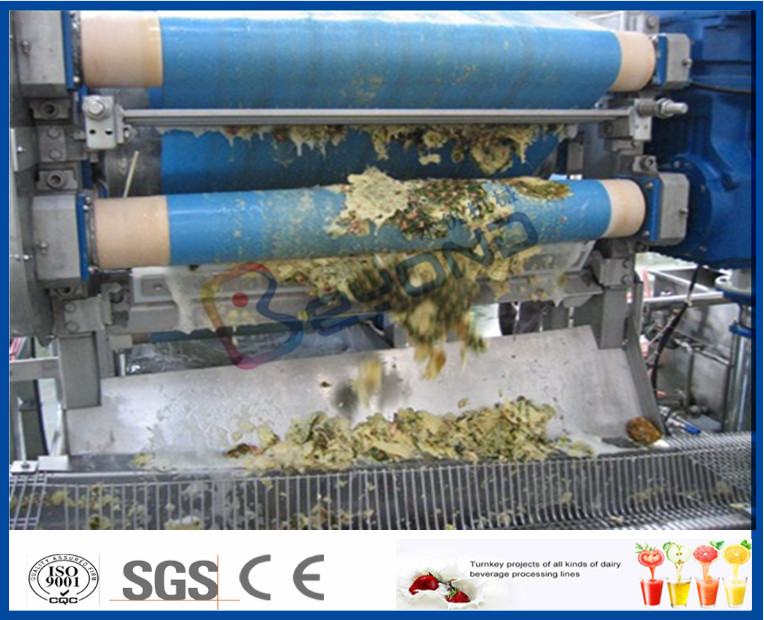 60-1500T/D Fresh Pineapple Processing Line With Aseptic Bag / PET Bottle Packing Machine